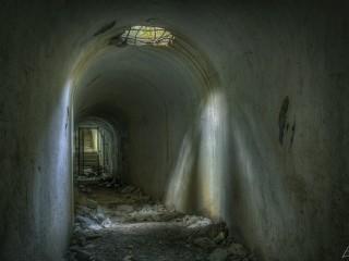 El tunel de la vida